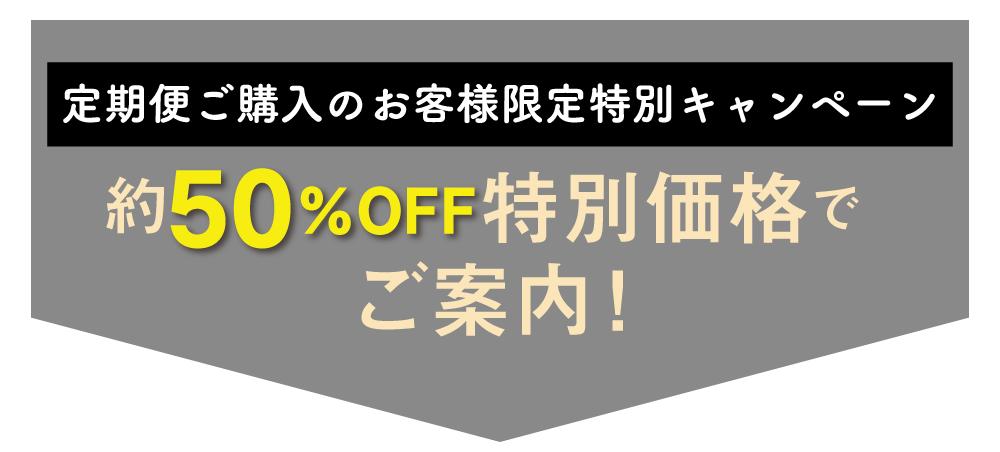 クオリア50%OFF!
